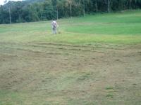 やはり,草刈り・・・。