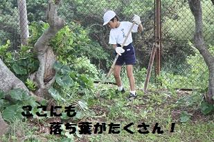 勤労活動0925 ブログ用4.jpg