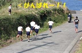 持久走大会1212 ブログ用 スタート直後2.jpg