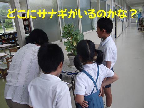 CIMG4529 ブログ.JPG