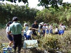 枝豆収穫1.jpg