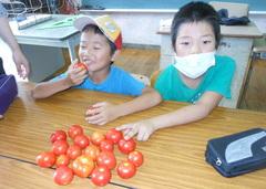 tomato2.jpgのサムネール画像のサムネール画像のサムネール画像